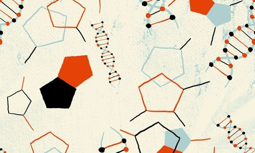 Where are We on the Origin of Life Problem